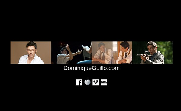 dominiqueguillo.com
